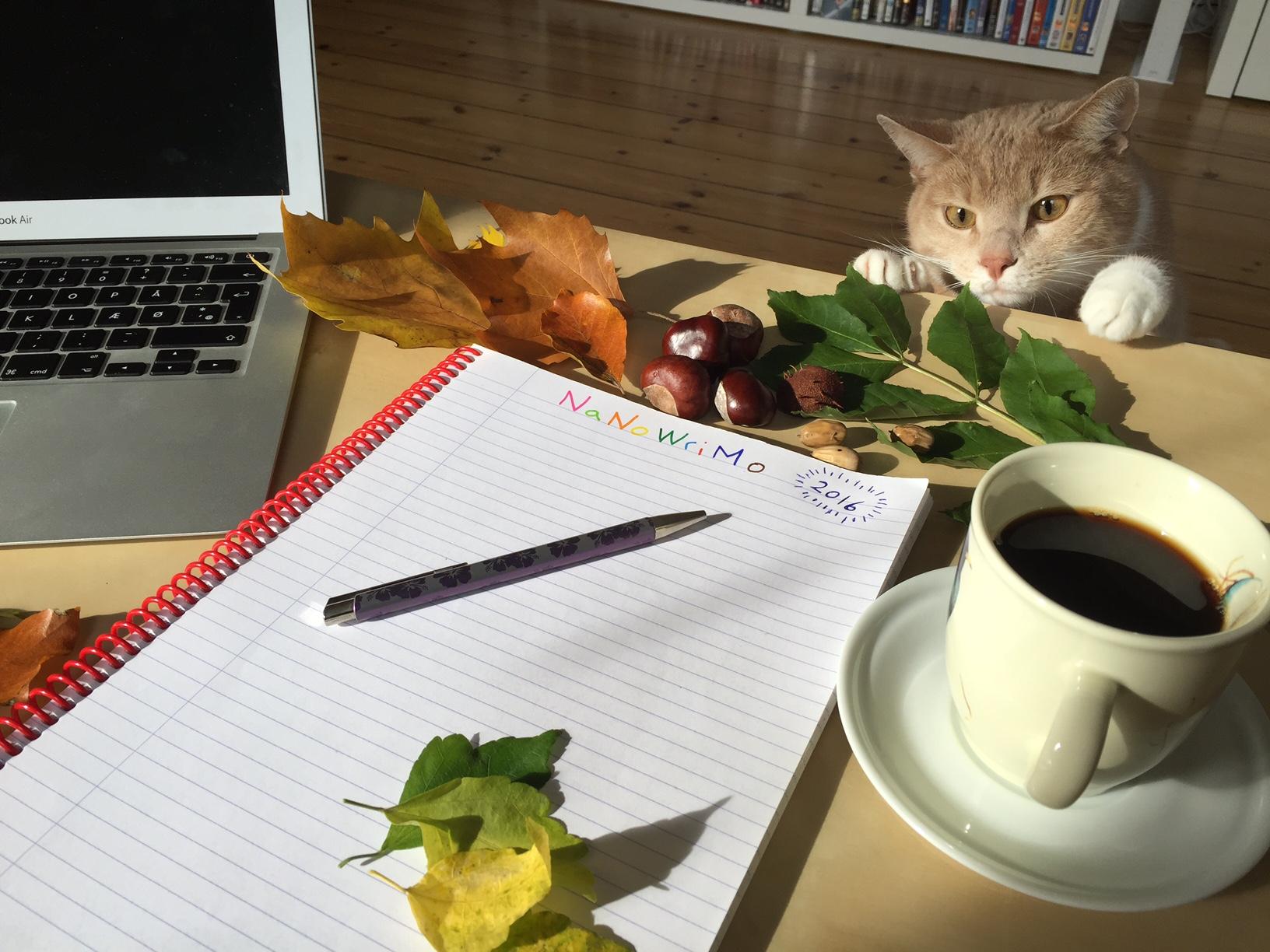 Blank blok, computer, kaffekop og kat