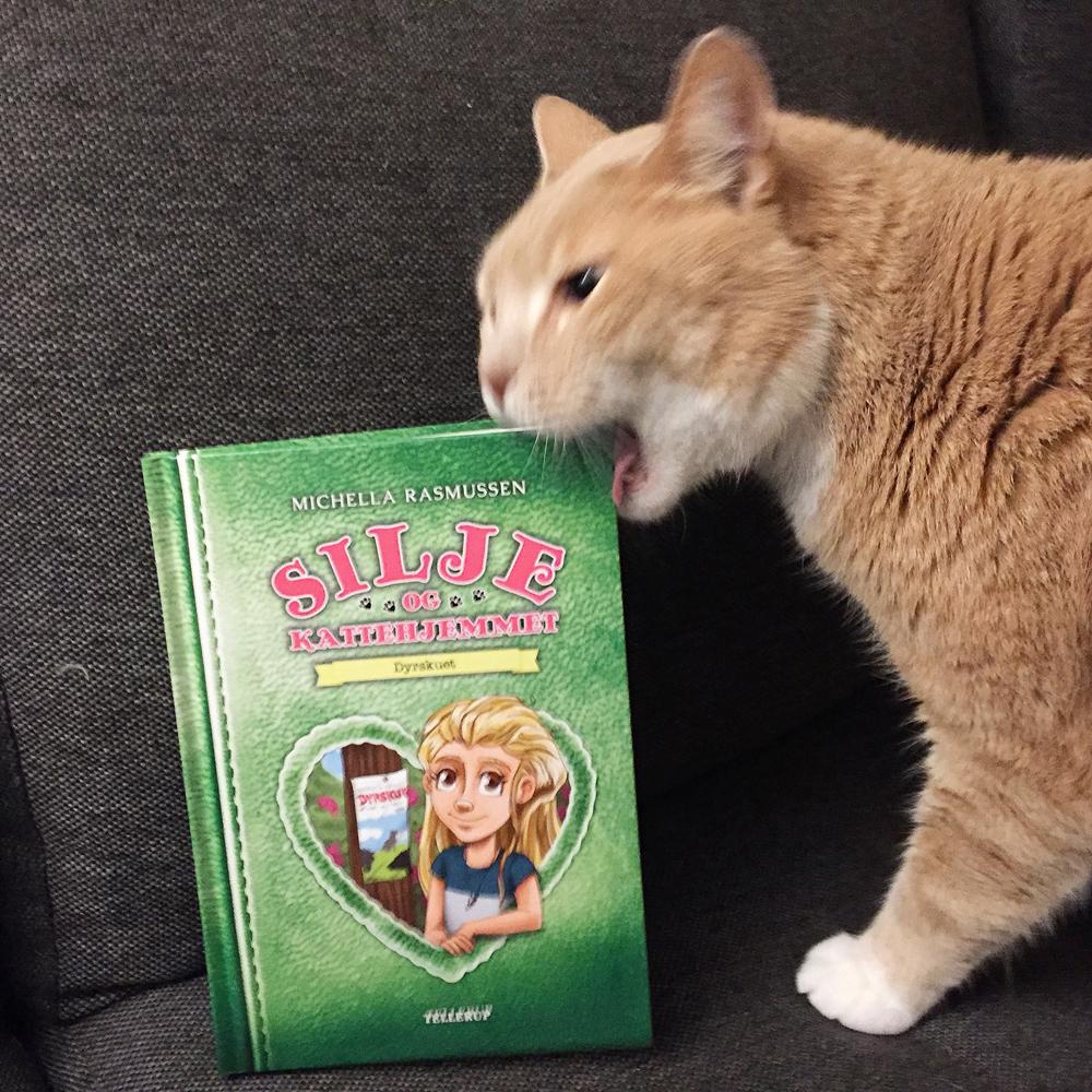 Forfatterstatus: Kat Emil tjekker om Dyrskuet er spiselig.