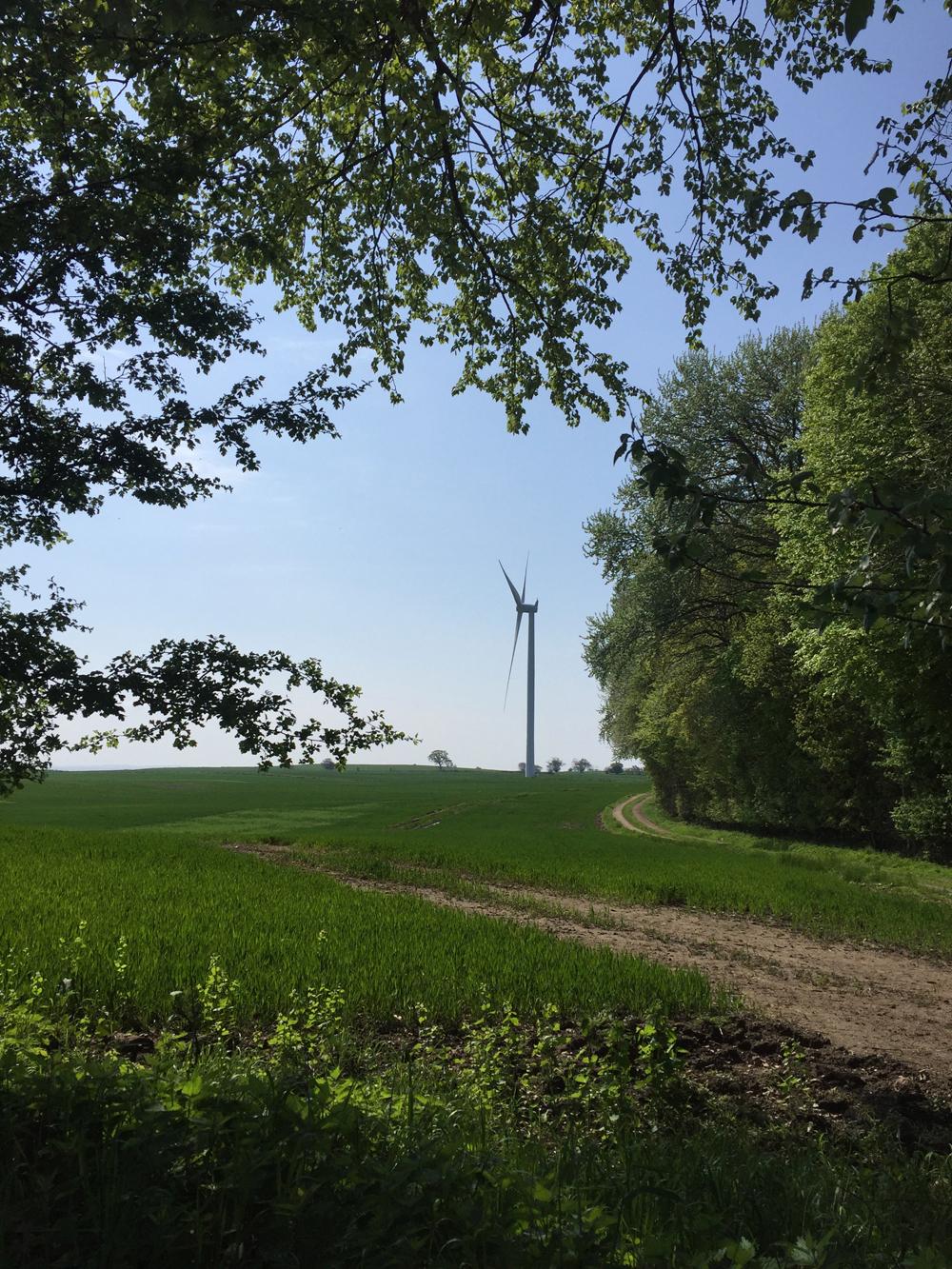 Rævetræf - Vindmølle på Langeland
