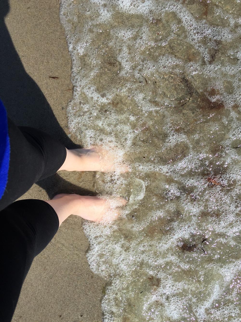 Rævetræf - Soppetur i havet
